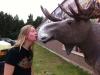 putte_elk